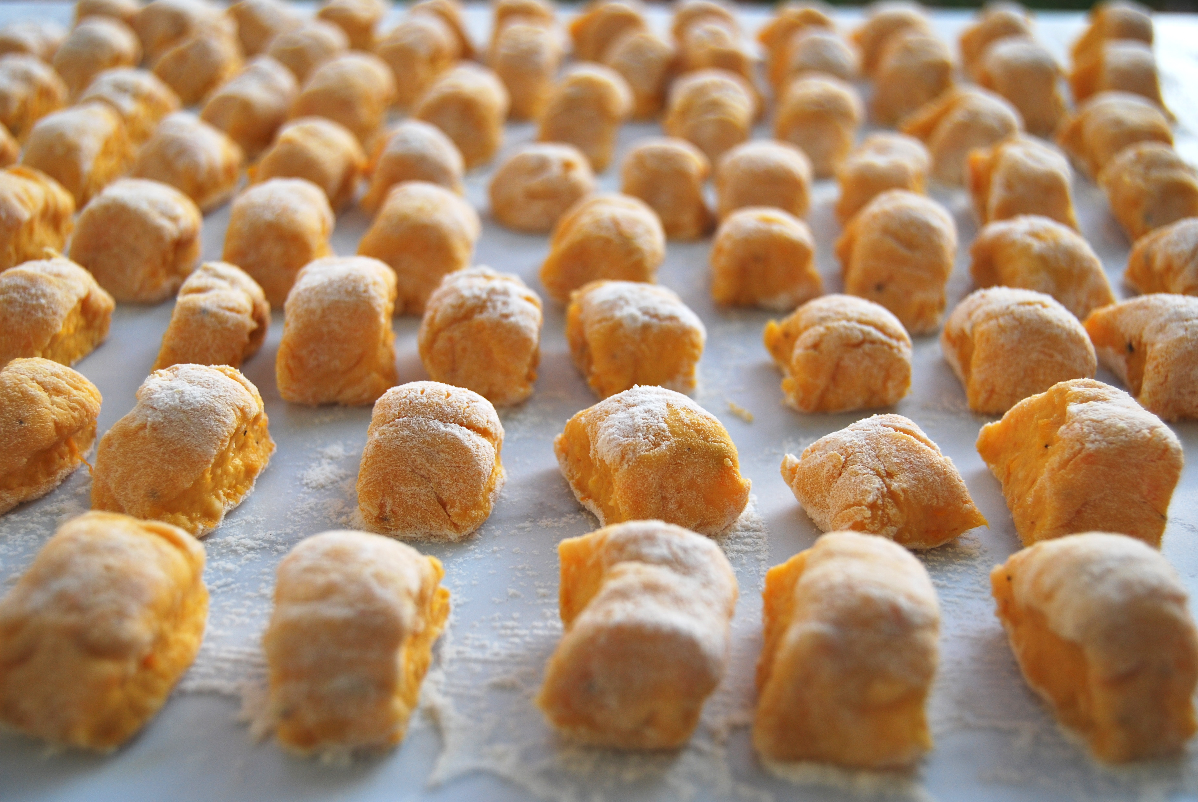 ... pdf of the recipe Butternut Squash Gnocchi with Taleggio Cheese Sauce
